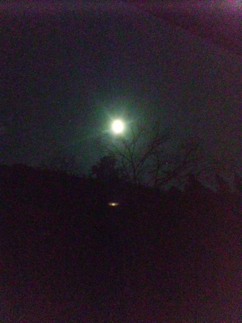 満月です(<br />  ☆_☆)