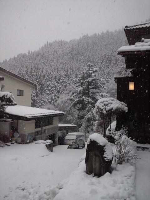 雪です(~o~)