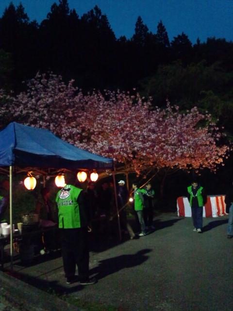 夜桜まつり