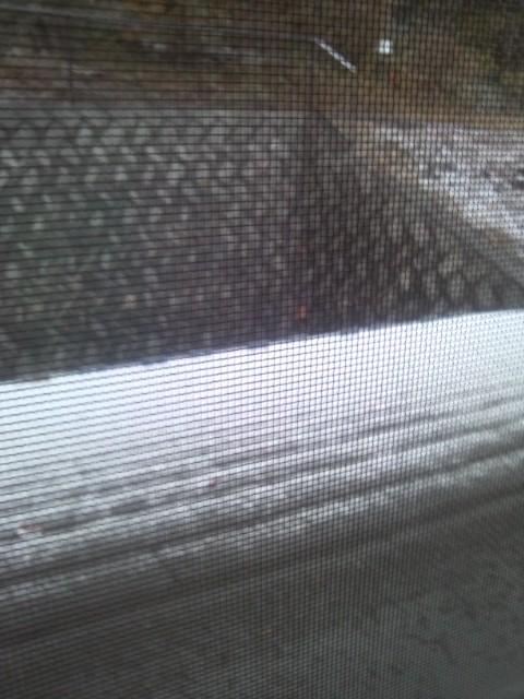 屋根に雪!